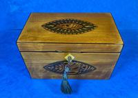 Late 18th Century Fruitwood and Applewood Twin Tea Caddy (12 of 21)