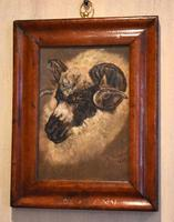 Sheep Portrait Oil Painting by H.Windred (7 of 7)
