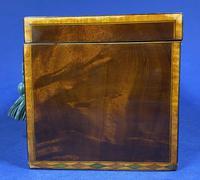 18th Century Mahogany Twin Tea Caddy with Shell Inlay (15 of 17)