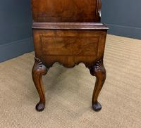 Burr Walnut Dome Topped Bookcase (13 of 18)