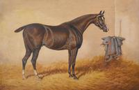 Monarch, Oil Painting of a Horse by William Eddowes Turner (4 of 8)