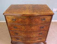 Antique Burr Walnut Shaped Front Chest of Drawers (5 of 7)
