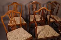 Set of 6 Georgian Dining Chairs  Hepplewhite (3 of 5)