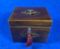 18th Century Mahogany  Shell Inlaid Tea Caddy (15 of 18)