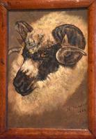 Sheep Portrait Oil Painting by H.Windred (3 of 7)