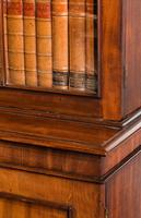 Regency Period Mahogany Bookcase with Gothic Tracery (3 of 6)