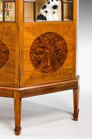 Edwardian Period Mahogany Display Cabinet with Offset Side Panels (7 of 8)