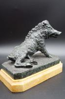 A Finely Modelled Mid 19th Century Bronze Figure of the Ufizzi Boar (5 of 8)