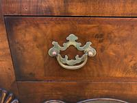 Burr Walnut Dome Topped Bookcase (9 of 18)