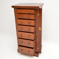 Antique Victorian Mahogany Wellington Chest of Drawers (3 of 20)