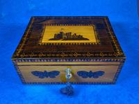 William IV Early Mosaic Tunbridge Ware Table Box (2 of 20)