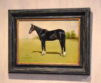 Horse oil painting 'Victor' by L Mallender (6 of 8)