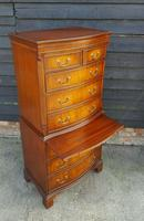 Repridux Bevan Funnel Serpentine Front Mahogany Chest of Drawers