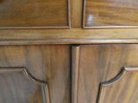 19th Century Cabinet by A. Blane & Son (4 of 12)