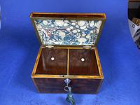 18th Century Mahogany Twin Tea Caddy with Shell Inlay (6 of 17)