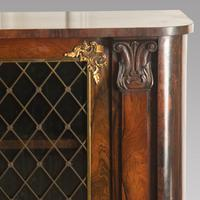 Pair of Early 19th Century Rosewood Chiffoniers (4 of 5)