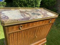 French Parquetry Cabinet (3 of 11)