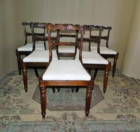 Set of 6 William IV Rosewood Dining Chairs (2 of 9)