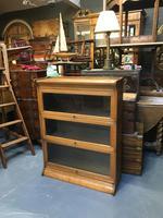 Globe Wernicke Type Bookcase (4 of 10)
