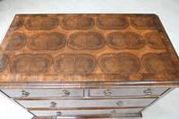 Walnut Oyster Veneer Chest of Drawers (10 of 12)