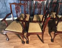 Set of six Edwardian Mahogany Dining Chairs (10 of 11)