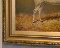 Beverley, Oil Painting of a Horse by William Eddowes Turner (5 of 7)