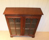 Mahogany Gothic Glazed Bookcase (10 of 11)