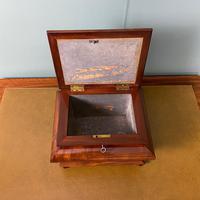 Unusual Victorian Mahogany Antique Tea Caddy (5 of 7)