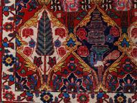 Antique Bakhtiari Rug with Sarv-o-kâdj Design (13 of 14)