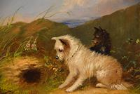 """Oil Painting by J Langlois """"Rabbiting"""" (3 of 5)"""