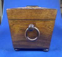 William IV Rosewood Tea Caddy (4 of 13)