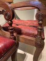 Simply Incredible Set of 14 Regency Dining Chairs c.1820 (4 of 6)