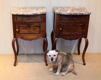 Pair Of French Walnut Bedside Cabinets (5 of 10)