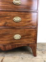 19th Century Mahogany Bow Front Chest of Drawers (14 of 18)