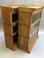 Globe Wernicke Type Bookcase (12 of 13)