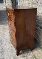 Large Regency Mahogany Bow Front Chest of Drawers (6 of 19)
