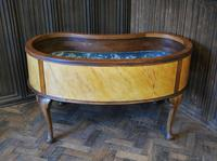 Large Antique Kidney Shaped Jardiniere (5 of 9)