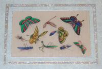 Fine Antique Pair of Chinese Paintings Butterflies & Insects on Pith (8 of 10)