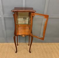 Art Nouveau Mahogany Vitrine (7 of 15)