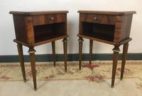 Vintage French Mahogany Cabinets Bedside Tables (13 of 14)