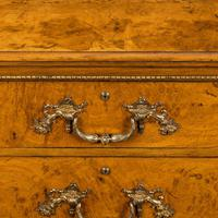 Fine George IV Burr Oak Chest of Drawers in the manner of Morel and Seddon (4 of 9)