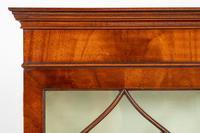 Regency Style Mahogany Bookcase c.1920 (5 of 7)