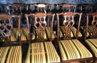 Set of Ten Georgian Style Mahogany Dining Chairs (7 of 13)