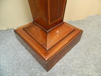 Pair of Mahogany Columns / Pedestals (4 of 6)
