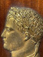 Pair of Interesting 19th Century Gilded Bronze Alexander The Great & Napoleon Cameo Plaques (14 of 29)