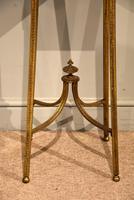19th Century Gilt Bronze Tulipwood & Kingwood Urn Stand (3 of 8)