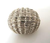 Stunning Victorian Silver Novelty Clam Shell Nutmeg Grater Hilliard & Thomason Birmingham 1874 (2 of 11)