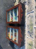 Pair of Antique Mahogany Shop Display Cabinets (5 of 8)