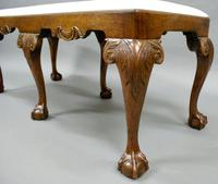 Late 19th Century George II Style Stool (4 of 6)