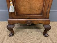 Queen Anne Style Burr Walnut Bedside Cupboard (6 of 10)